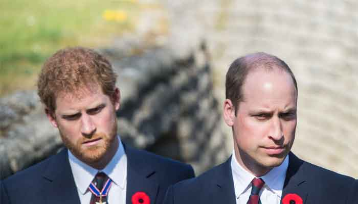 Prince William has to choose between Prince Harry and a royal position