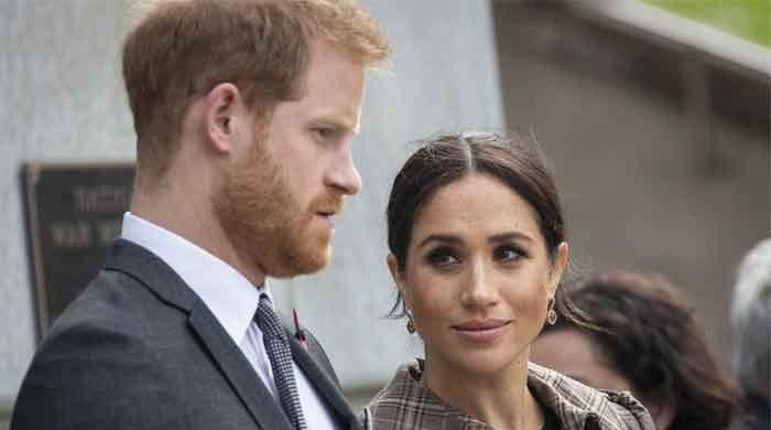 Meghan Markle, Prince Harry's expertise as social media experts called into question