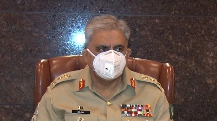Bid to destabilise Pakistan will be met with firm response: Gen Bajwa