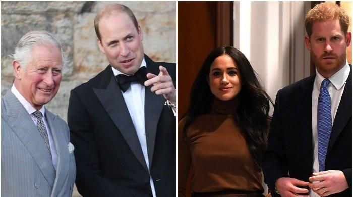 Prince Harry, Meghan Markle's exit plan was shrugged off by Charles, William