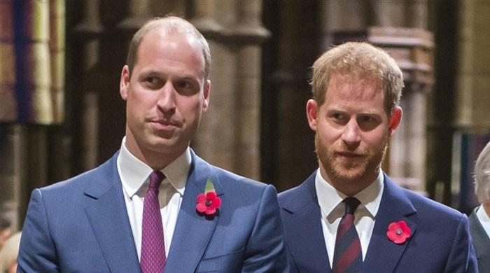 Prince Harry, Prince William have only five months to 'heal their rift'