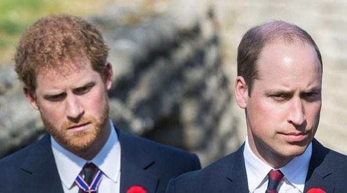 Prince William exceedingly 'jealous' of Prince Harry's 'rouge' reputation