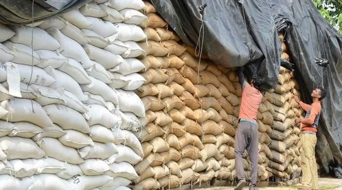 Mill owners work together to create sugar crises, Competition Commission finds