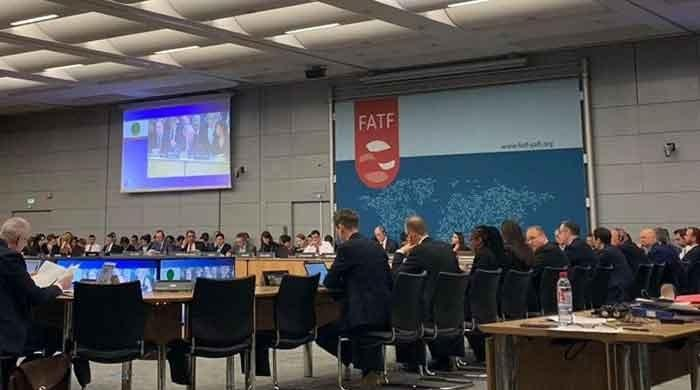 EU had opposed Pakistan's exit from FATF grey list ahead of plenary