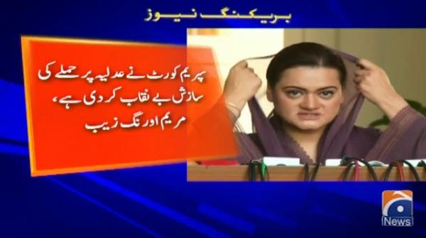 Government spokespersons have gone mad: PML-N spokesperson
