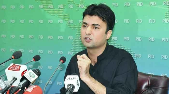 India celebrating allegations against PM Imran Khan in PDM 'circus': Murad Saeed