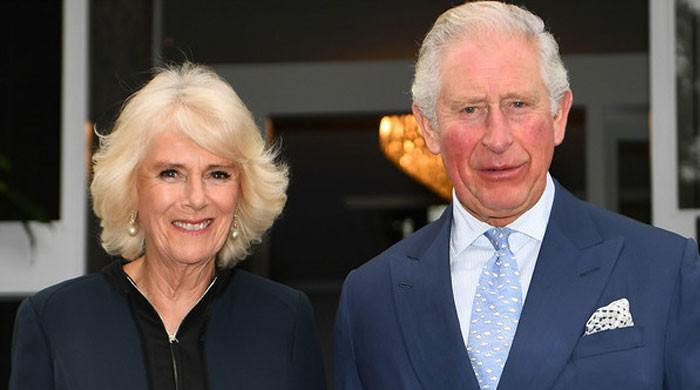 Camilla Parker Bowles took great pains to hide affair with Prince Charles