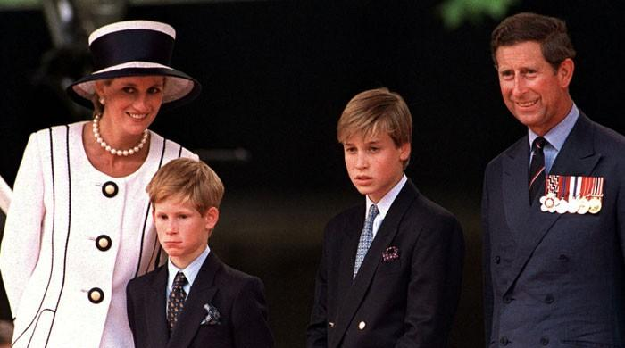 Princess Diana wanted Prince Charles to step down and let son Prince William succeed Queen