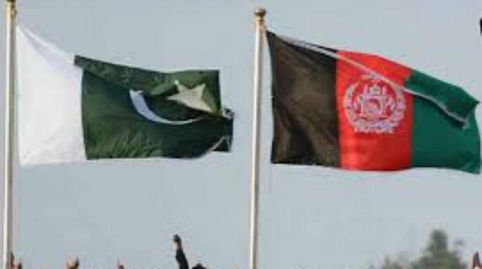 Pakistan's role is pivotal in achieving peace in Afghanistan: EU official