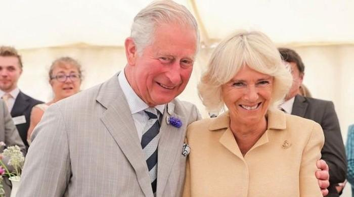 Prince Charles, wife Camilla brutally slammed on Twitter after 'The Crown's latest season