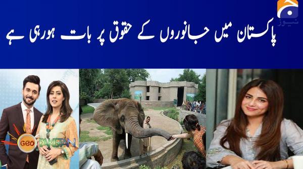 Pakistan main janwaron ke huqooq par bat horahi hai!