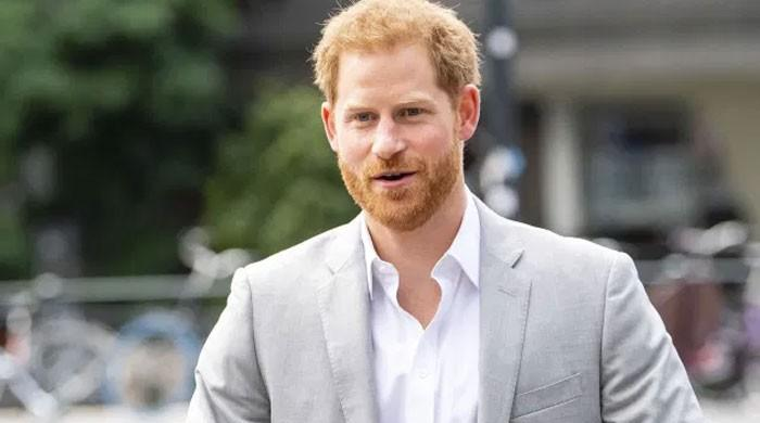 Prince Harry lauded over 'four-hour shift' for troubled Californians: report