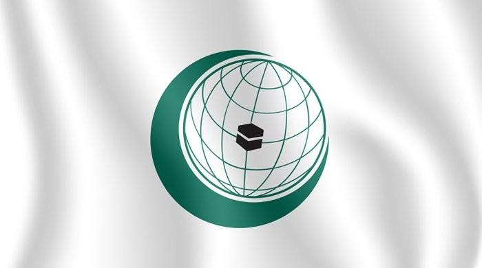 Pakistan thanks OIC for steadfast support on Kashmir issue at 47th CFM session