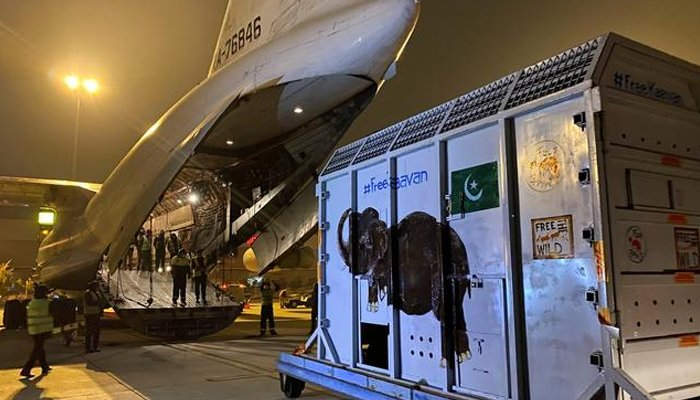 A crate carrying Kaavan, an elephant to be transported to a sanctuary in Cambodia, is seen at the Islamabad International Airport in Islamabad, Pakistan, November 30, 2020. REUTERS/Saiyna Bashir