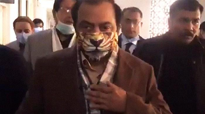 'Noonie Swag': Rana Sanaullah's lion face mask turns heads in court, on Twitter