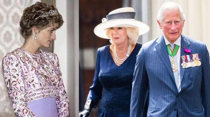 Prince Charles, Camilla's struggles began due to Princess Diana