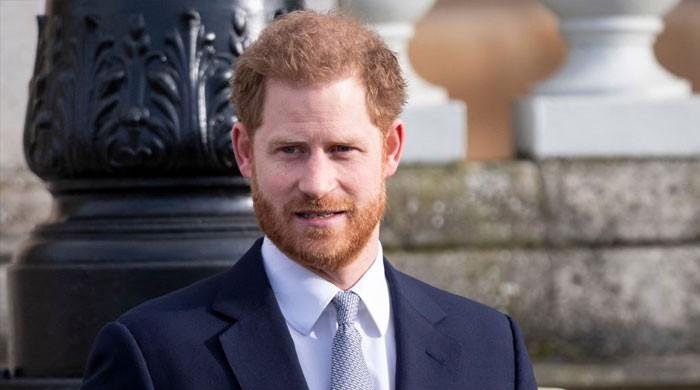Prince Harry touches on everything Meghan Markle has been up to in 2020