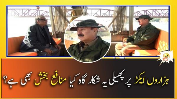 Hazaron Aikar Par Phaili Yeh Shikar Gah Kia Munafah Bakhsh Bhi Hai