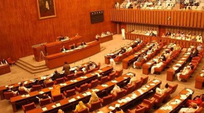 Senate election: Candidates elected unopposed on technocratic, women's seats in Punjab