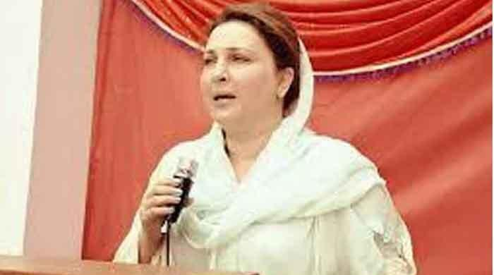 Boycotted PM's meeting to register protest: PTI MPA Maliha Ali Asghar