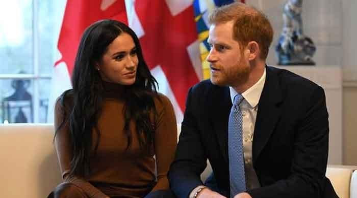 Prince Harry, Meghan Markle's royal roles likely to evolve under Charles, says expert