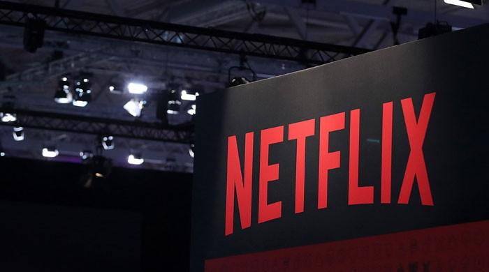 Netflix outclasses theatrical movies in diversity: study