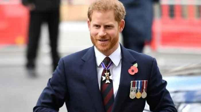 Americans fail to recognise Prince Harry in latest poll