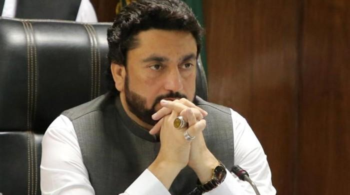 Senate election: How did Shehryar Afridi waste his vote?