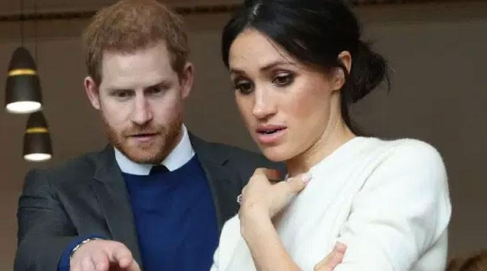 Palace aides fire back with stories of Meghan Markle's 'horror' tantrums: 'This is not done!'