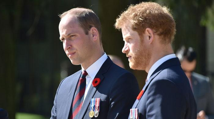 Prince William won't give Harry 'free pass' to 'muck around': report