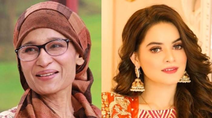 Minal Khan supports Naila Jaffery's plea to pay artists royalties