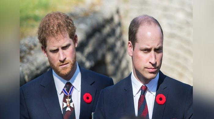 Prince Harry, William taking first steps to rebuild tainted relationship: source