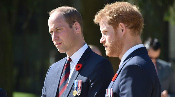 Princes William and Harry's reunion was a 'baby step' towards mending ties