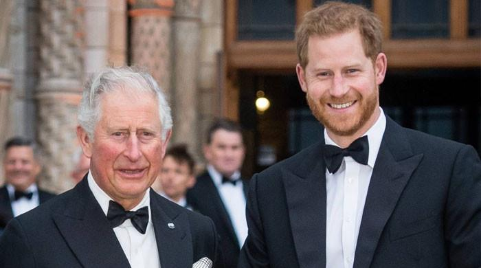 Prince Charles, Harry have 'a lot of bad blood' with many 'low bow insults'