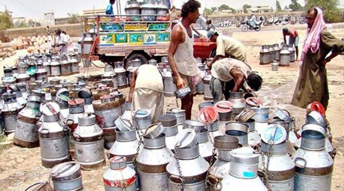 Sindh allows bakeries, milk shops to operate till midnight