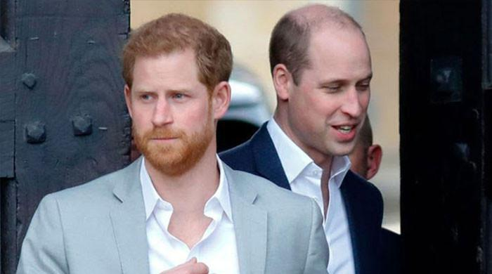 Prince Harry, William unable to mend rift over 'hurt' feelings: report