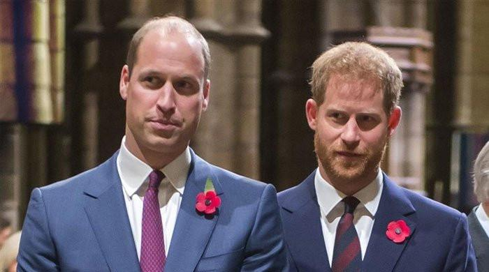 Prince William, Prince Harry 'not talking at the moment'