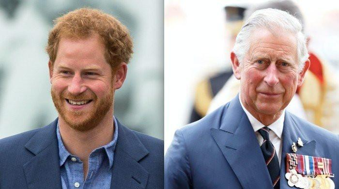 Royal family 'baffled' by Prince Harry's attack on Charles: senior royal aides