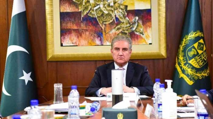 Israel's crimes against humanity should not escape accountability: Qureshi to OIC