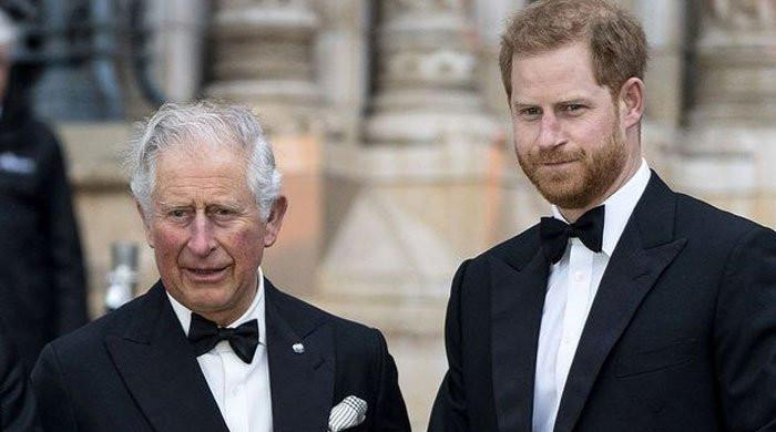 Prince Harry warned over attempts to mend Prince Charles relationship