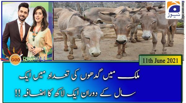 جیو پاکستان -11 جون 2021ء