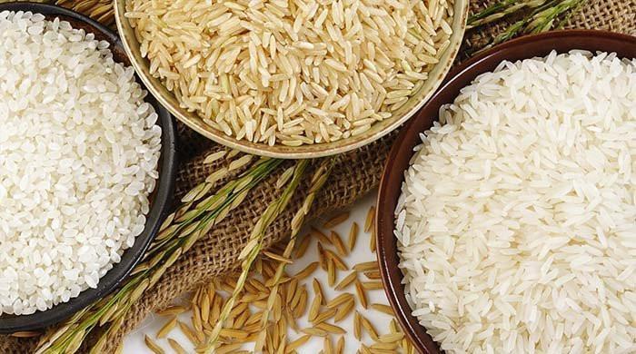 Russia lifts ban on import of Pakistani rice