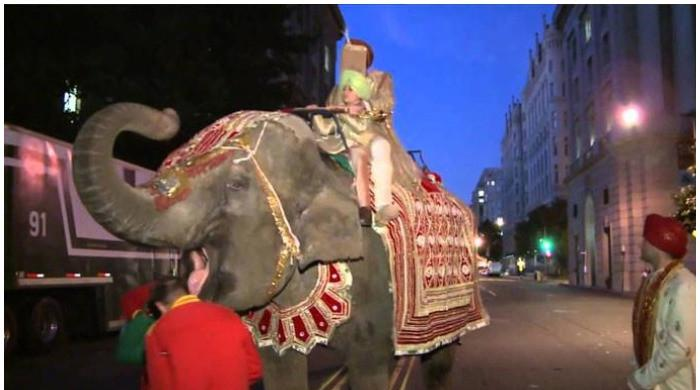 WATCH: Angry elephant destroys wedding party, forces groom to flee venue