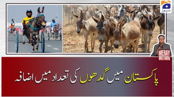 Pakistan Main Gadhon Ki Tadaad Main Izafa!