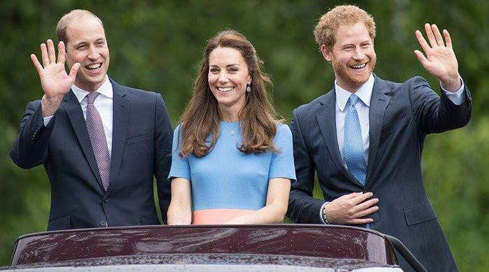 Prince Harry texted Kate about Lili's birth instead of Prince William: source