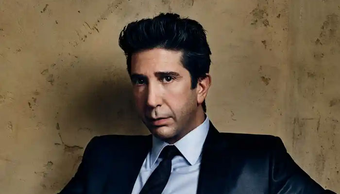 David Schwimmer says he was 'supposed to be a doctor' but he got 'distracted' by girls