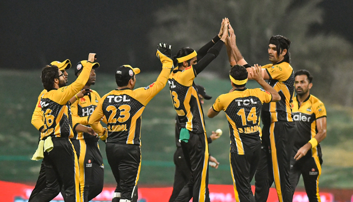 Peshawar Zalmi celebrate after dismissing a Karachi Kings batsman at Abu Dhabis Sheikh Zayed Cricket Stadium. Photo: PSL
