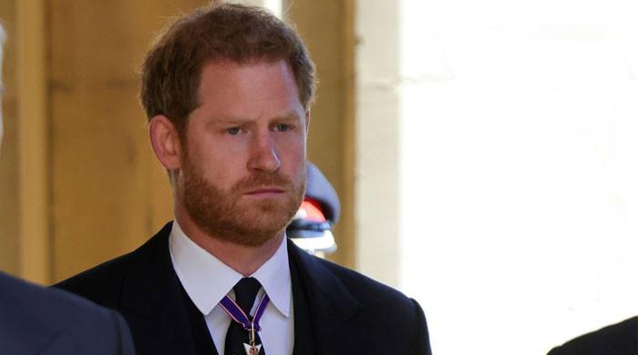 Prince Harry given 'strict' rules for Diana statue visit: report