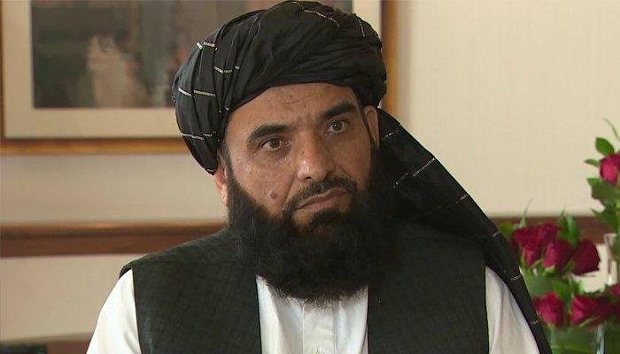 Taliban spokesperson Suhail Shaheen. Photo: Geo.tv/ file