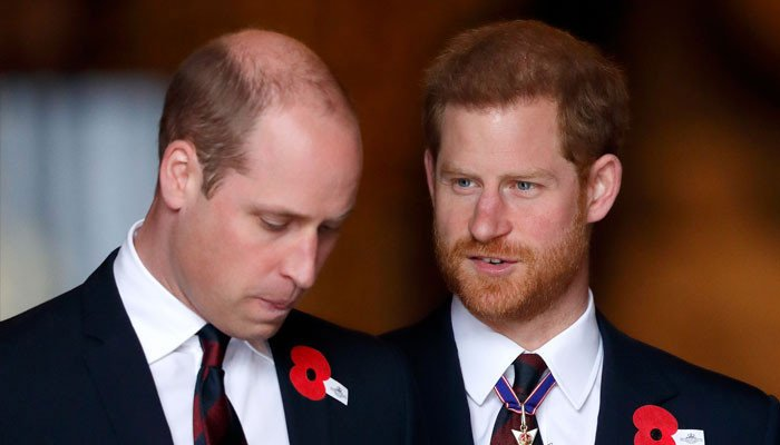 Prince William 'jealousy over 'free Prince Harry laid bare - Geo News